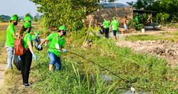 Hướng dẫn thu gom, vận chuyển và xử lý bao gói thuốc bảo vệ thực vật sau sử dụng
