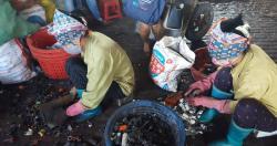 Trẻ làng Đông Mai phơi nhiễm chì nghiêm trọng: Điều trị chưa xong, đã lo tái...