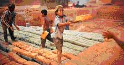 Cấm sử dụng lao động chưa thành niên