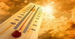 Những dấu hiệu và cách xử trí một số bệnh lý do nhiệt