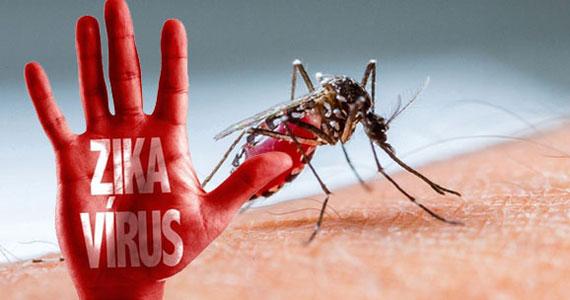 Virut Zika và cách phòng tránh các bệnh gây ra bởi virut này